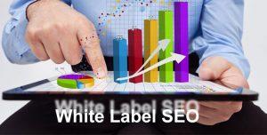 white label seo