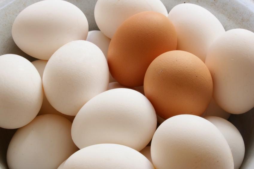 Norco Ranch Eggs